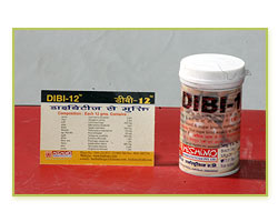 Dibi 12, Diabetes Powder